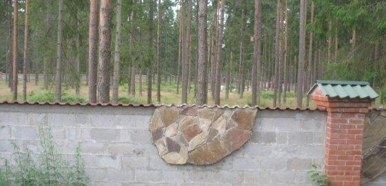 Лес под ИЖС