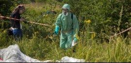 Токсичная беспечность