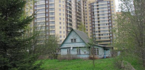 """""""Большим"""" Петербург станет к 2038 году"""