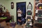 Один день голубятника: Фоторепортаж