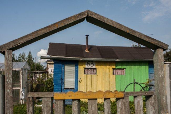 В огородничестве «Витамин» // Фото: Елена Лукьянова