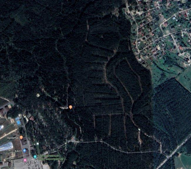 Лесной массив, «размеченный» под строительство коттеджного поселка // Фото: Google Maps