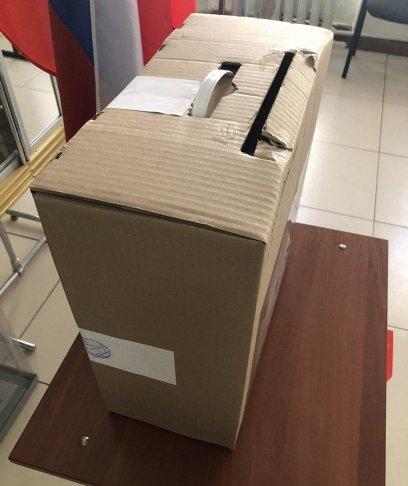 Самодельный ящик для голосования на одном из участков. Фото: facebook.com