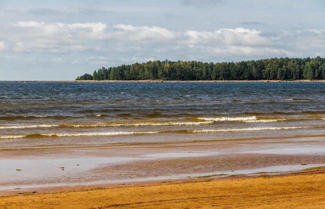 Бухта Желтая и мыс Кюрённиеми. Фото: anashina.com